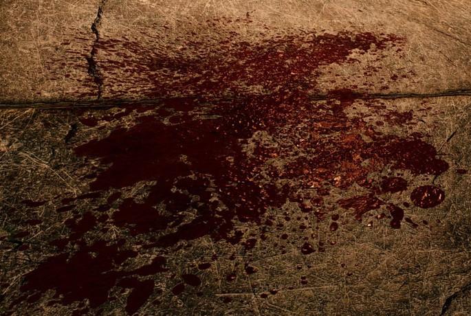 Enhanced Blood Textures - Mods Skyrim