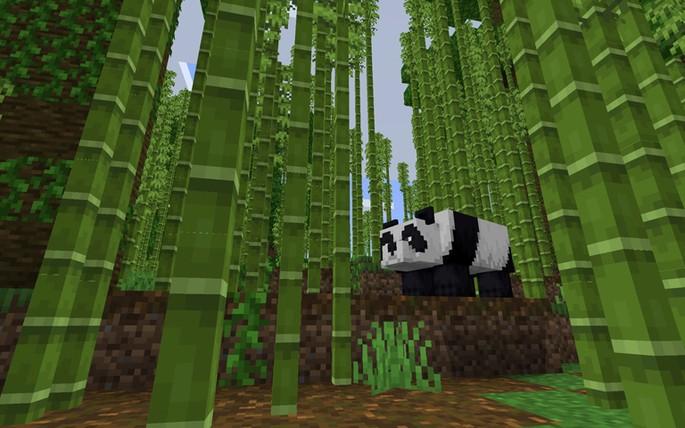 Jungla de bambú y pandas - Semilla de Minecraft PE