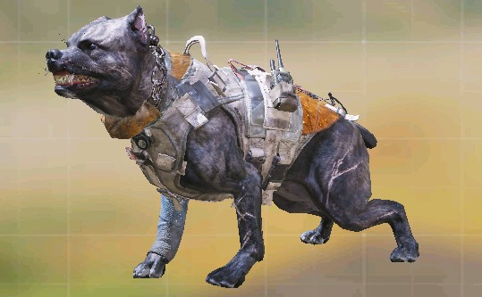 Unidade canina CODM